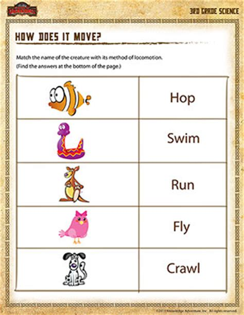 3rd Grade Science Worksheets by How Does It Move 3rd Grade Science Worksheets