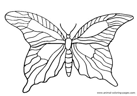 realistic butterfly coloring pages pinterest discover and save creative ideas