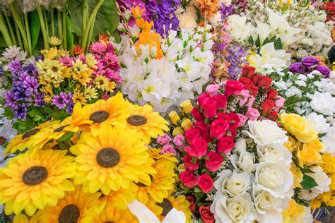 arte giardino goditi la bellezza dei fiori perenni arte giardino