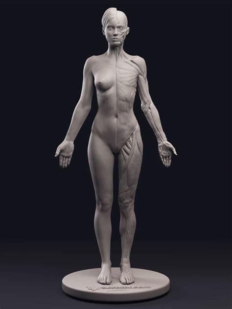 dan quayle anatomically correct doll artistic anatomy with daniel crossland mold3d academy