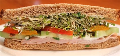 terrific sandwich recipes for both hot and cold sandwiches fresh easy meals recipes for
