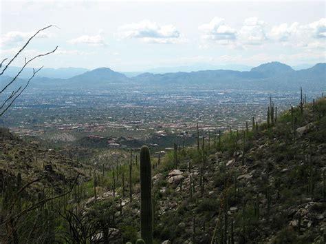 Landscape Rock Tucson Tucson From Finger Rock Trail Photograph By Diane Bombshelter