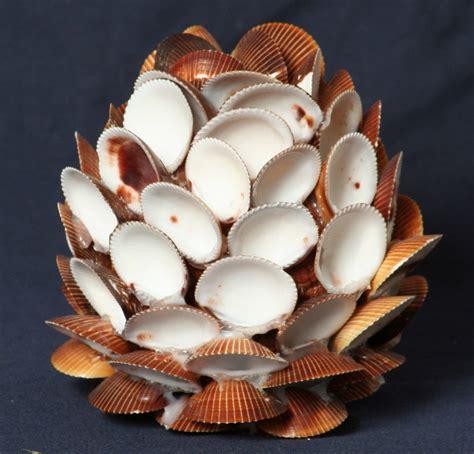 Seashell L by Shell Cockle Sea Shell Seashells Sea Shells Ebay