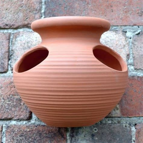 Wall Mounted Strawberry Planter by Strawberry Pot Wall Planter Terracotta Uk The Home