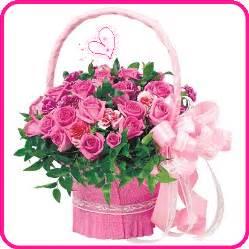 Birth Flower For November - happy birthday megha neha55 meghq 1287195 dill mill