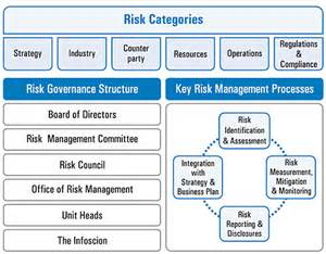 annual report 2010 2011 risk management report infosys