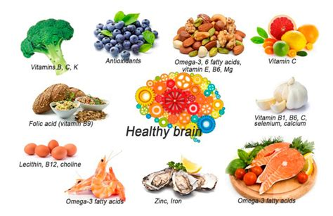 diet for the mind the science on what to eat to prevent alzheimer s and cognitive decline books the best 8 foods for a healthy brain and sharp memory be
