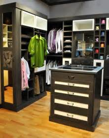 california closets walk ins modern closet