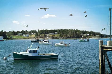 Maine Office Of Tourism by Maine Office Of Tourism Picture Of Maine United States