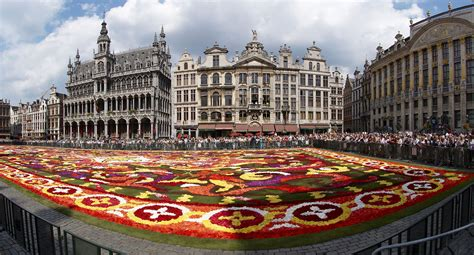 brussels images file brussels floral carpet c jpg