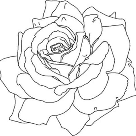 coloring pages of red roses red rose coloring page red rose coloring page color nimbus