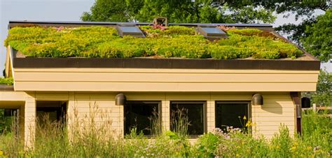 residential green roof