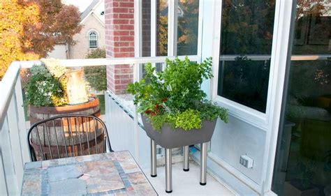 balcony garden idea balcony garden ideas and solutions garden365