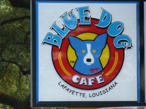 blue cafe lafayette 17 best images about lafayette la on cajun food restaurant and martin o
