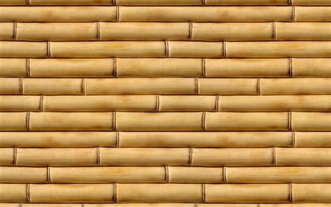 bamboo pattern texture bamboo texture bamboo bamboo texture photo background