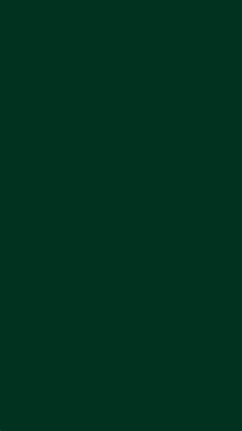 solid dark green wallpaper dark green color pictures to pin on pinterest pinsdaddy