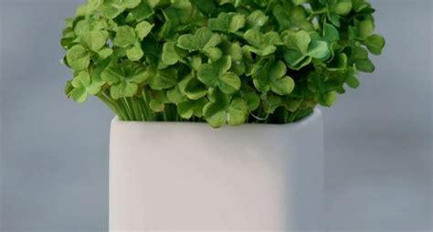 fiori artificiali vendita on line vendita piante finte piante artificiali vendita piante