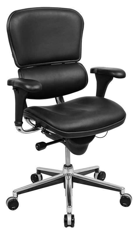 Raynor Chair Raynor Ergohuman Chair Le10erglo Ergohuman Chairs