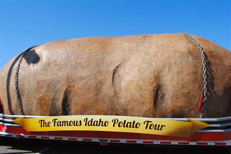world largest the carpetbagger the world s largest potato