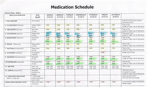 medication templates schedule willem february 2012