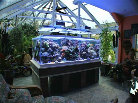 aquarium design ideas beautiful saltwater aquarium design ideas aquarium mania