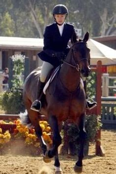 pin by christina rossie on santa barbara style homes martha stewart on a majestic iceland horse on her tv show