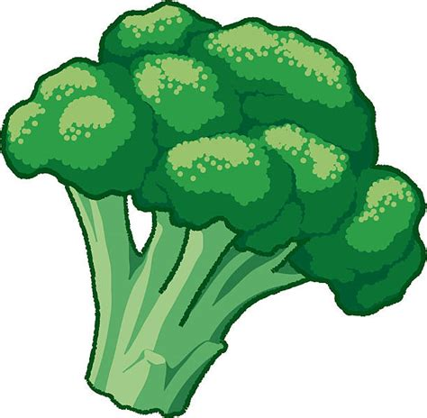 clipart vectors broccoli clip vector images illustrations istock