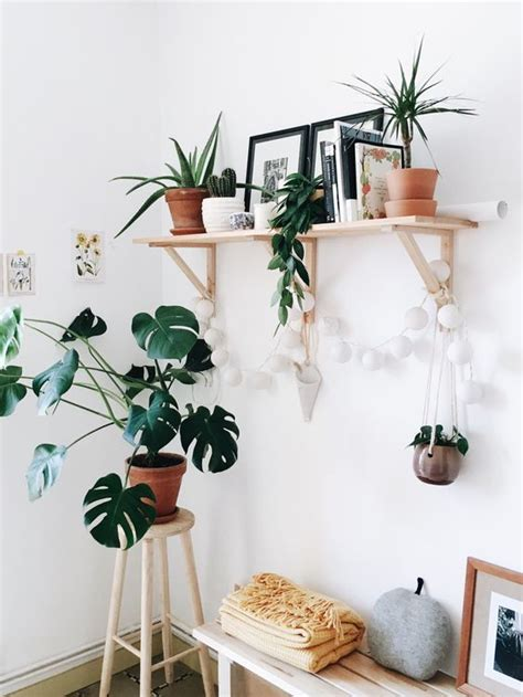 home decor blog names blog growing green a guide for adding houseplants to