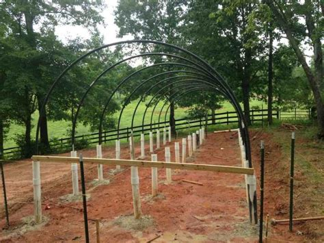bobwhite quail cage plans house plans
