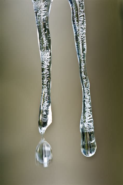 symphony of lights amazing ice drip 20 beautiful icicle photos