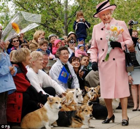 corgis queen elizabeth queen to stop breeding beloved corgis after more than half a century of royal pets daily mail
