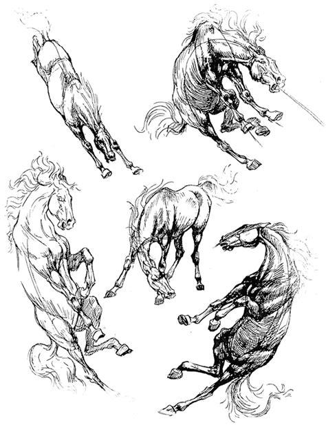 "Иллюстрации Ken Hultgren ""The Art of Animal drawing"""