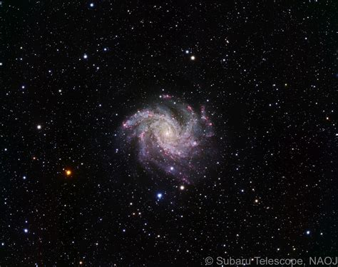 subaru galaxy star formation in face on spiral galaxy ngc 6946 naoj