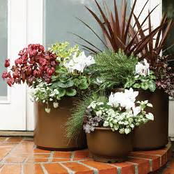 spring summer planter ideas bloomingdesign