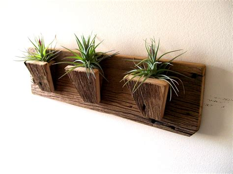 Plant Holder - air plant holder planters tillandsia air plants by