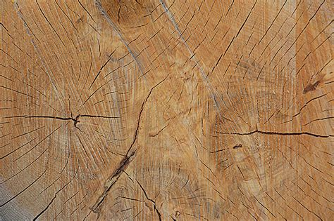 download pattern wood photoshop 14 wood texture free download textures for photoshop free