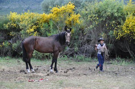 Mit Dem Motorrad über Die Anden by Reiturlaub In Patagonien Mit Dem Motorrad Durch