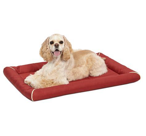 pet beds amazon dog beds amazon korrectkritterscom