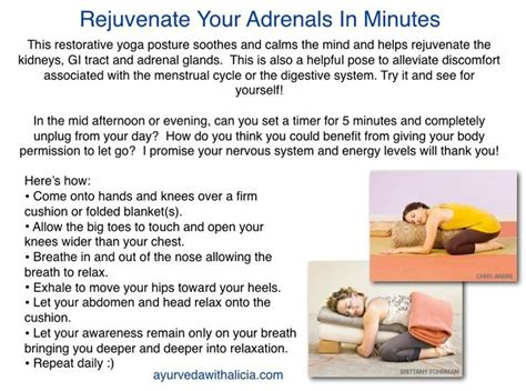 Detox From Adenal Fatigue by Detox Your Adrenal Glands Rub Your Essential Oils On And