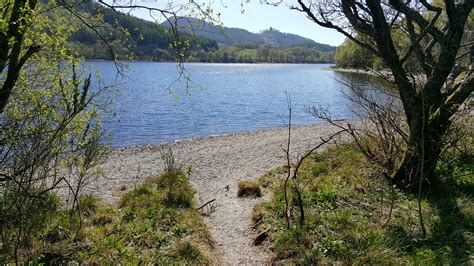 Loch Lubnaig Cabins by Forest Holidays Accessible Silver Birch Cabin Review