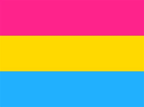 pansexual flag ideas  pinterest gender flags