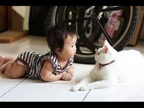 lucu bayi 1thn menirukan suara kucing bikin gemezz