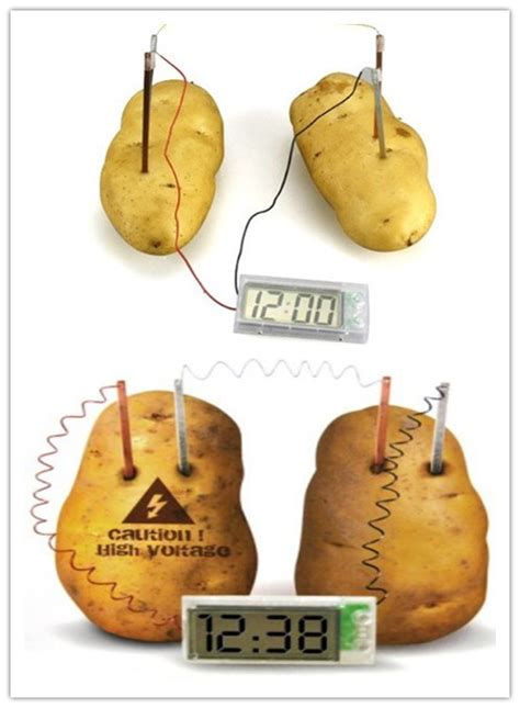 Fruit Powered Clock by Fruit Powered Clock 123inkcartridges Canada