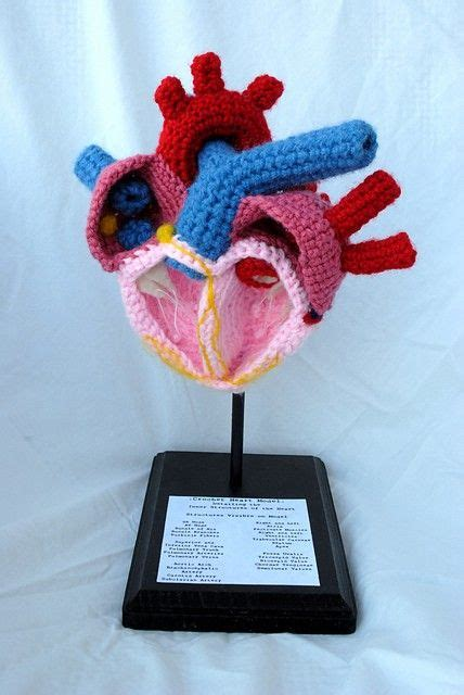 anatomically correct doll pattern 3560 best images about crochet on patrones