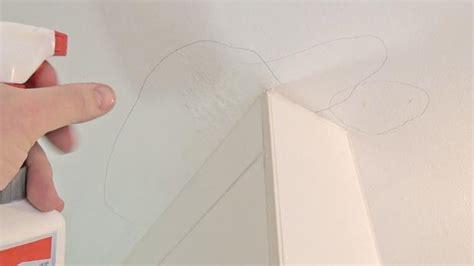 vorhã nge der decke schimmel im wohnzimmer entfernen eyesopen co