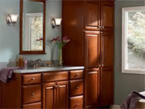 Bathroom Cabinet Designs built in bathroom bathrk 1 maple bathroom cabinets in chestnut finish