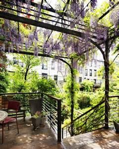 Wisteria Trellis Wisteria On A Steel Trellis Gardenista Lovely Gardens
