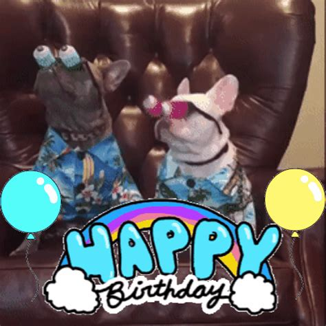 Happy Birthday Meme Gif - birthday dog gifs get the best gif on giphy