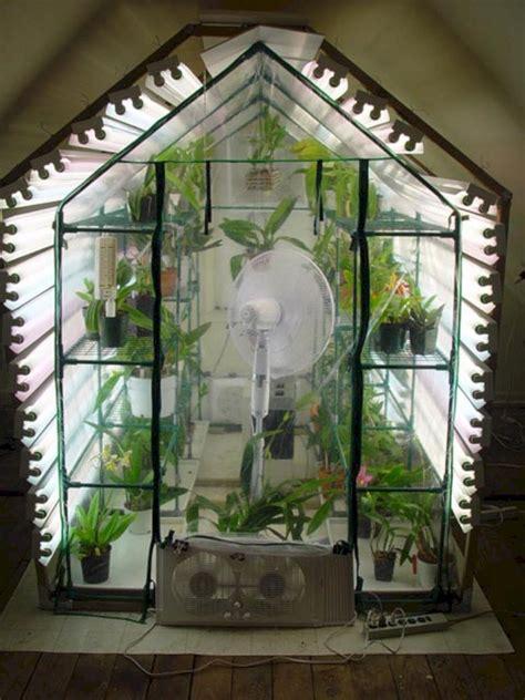 incredible custom indoor greenhouse  moltoon indoor