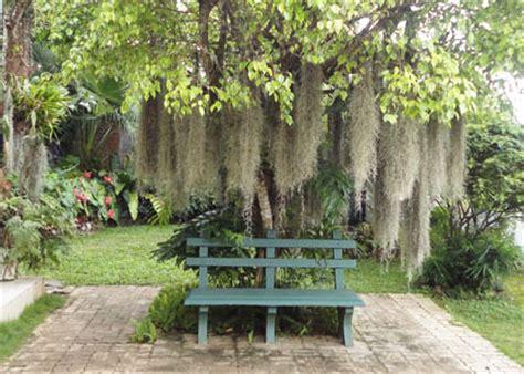 home garden landscaping sri lanka srilankaview